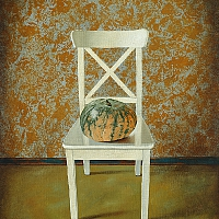 Pumpkin on a chair (60x50cm) 2015